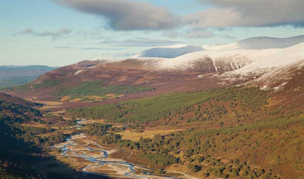 Upper Glenfeshie showing pine forest and braided channels of the River Spey