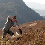 Man digging on heather moor