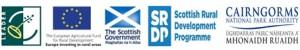 Leader & Partner logos