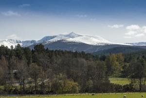 Snowy Lochnagar