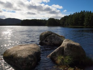 Loch Garten towards the Cairngorms