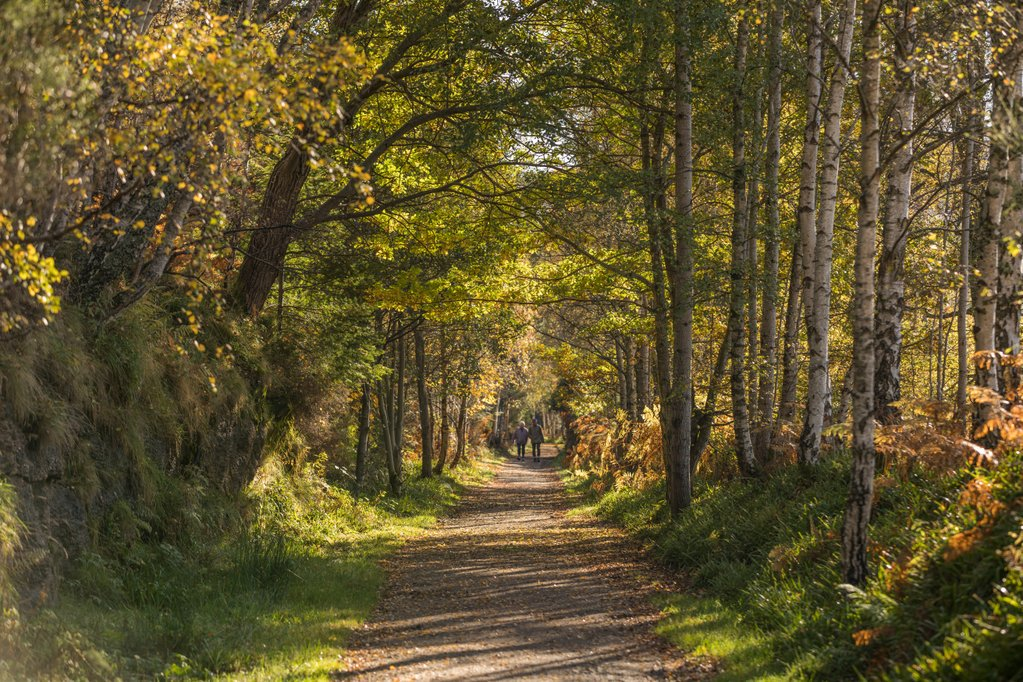 walking trails cairngorms national park authority