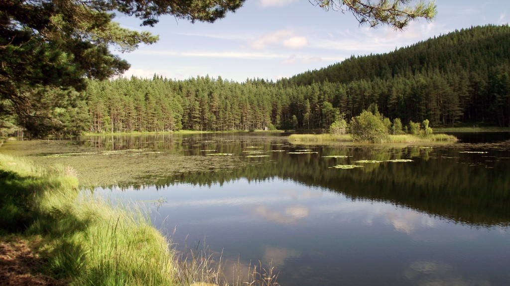 Loch Ullachie