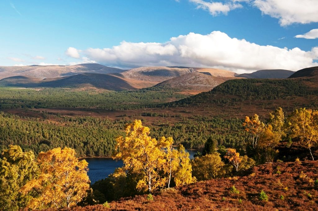 Rothiemurchus forest, Loch an Eilein, and Cairngorms from Ord Ban Hill.