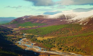 Upper Glenfeshie showing pine forest and braided river channels of River Spey, Cairngorms National Park, Scotland
