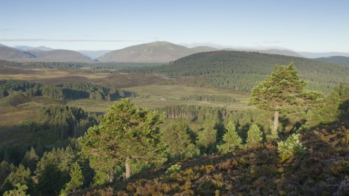 Published Literature - Cairngorms National Park Authority