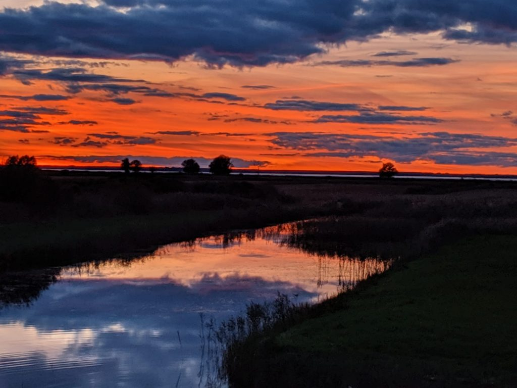 Sunset Latvia Heather Palomino