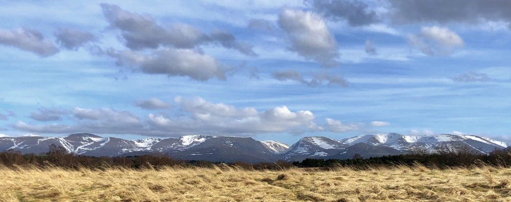 Snow Capped Cairngorm Mountains By David Clyne