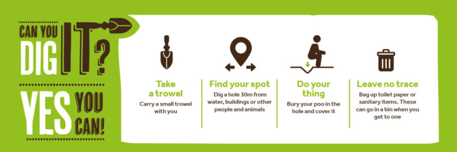 What to do if you need to poo infographic